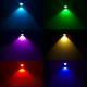 Kartal Gözü Led Renk